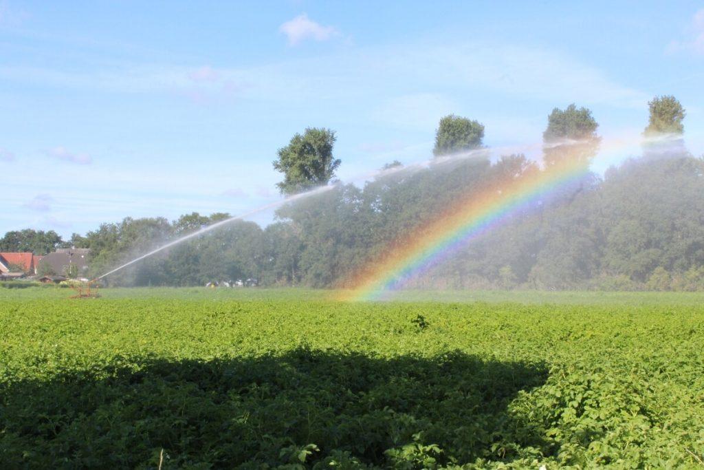 Regenbogen am Niederrhein Impression